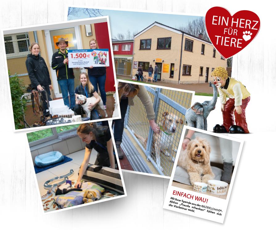 Spendenaktion 2017 - Tierschutzverein Bocholt und Umgebung e.V.
